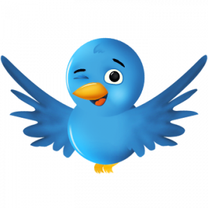Help and Solutions for Social Media Marketing and Services-Twitter