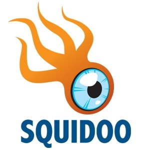 Using Squidoo Lenses To Brand Your Business Online